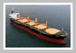Bulk Carrier Vessels
